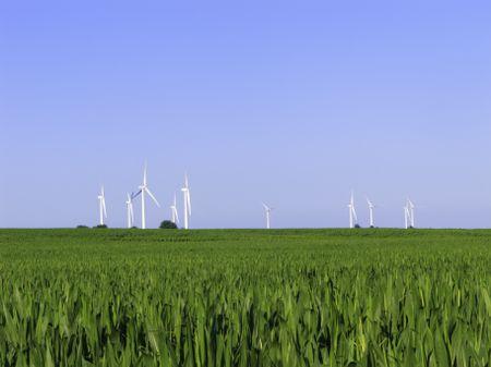 Wind turbines stand above horizon of corn field in northern Illinois