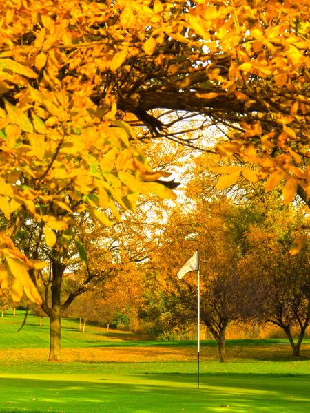 Golf course in autumn: Putting green surrounded by fall color (focus on flag)