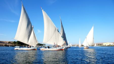 beautiful regatta boats by the sea on a sunny day