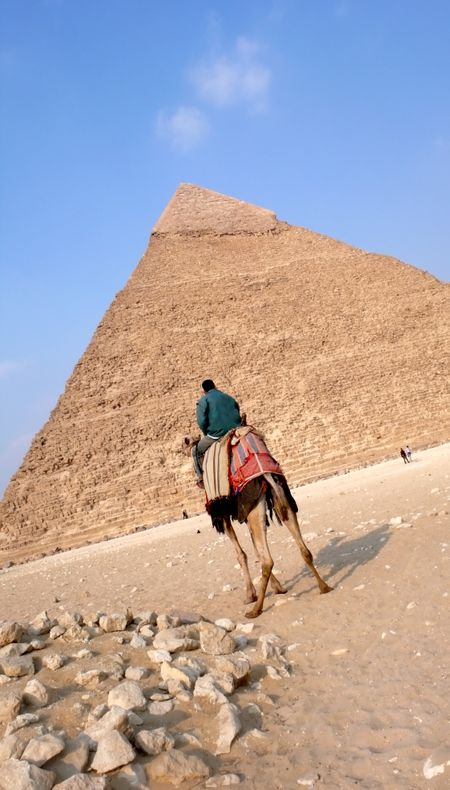 gizah pyramid in Egypt near Cairo with a camel in the foreground