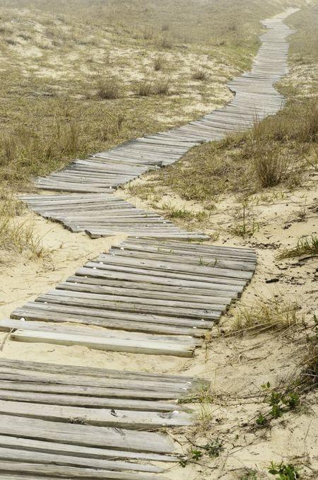Boardwalk winding across dune landscape at Back Bay National Wildlife Refuge, Virginia Beach, USA