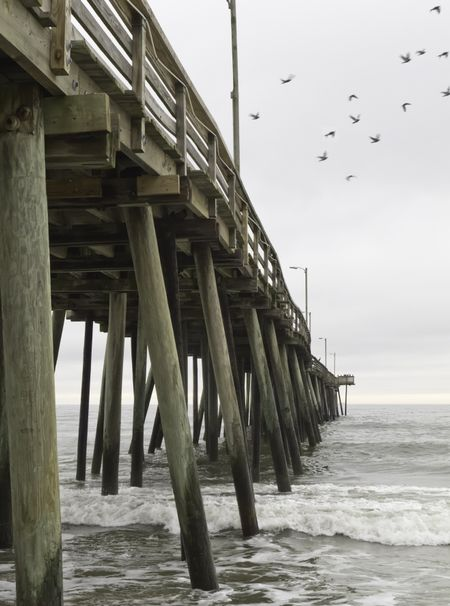 Fishing pier at Virginia Beach, USA, with departing seagulls