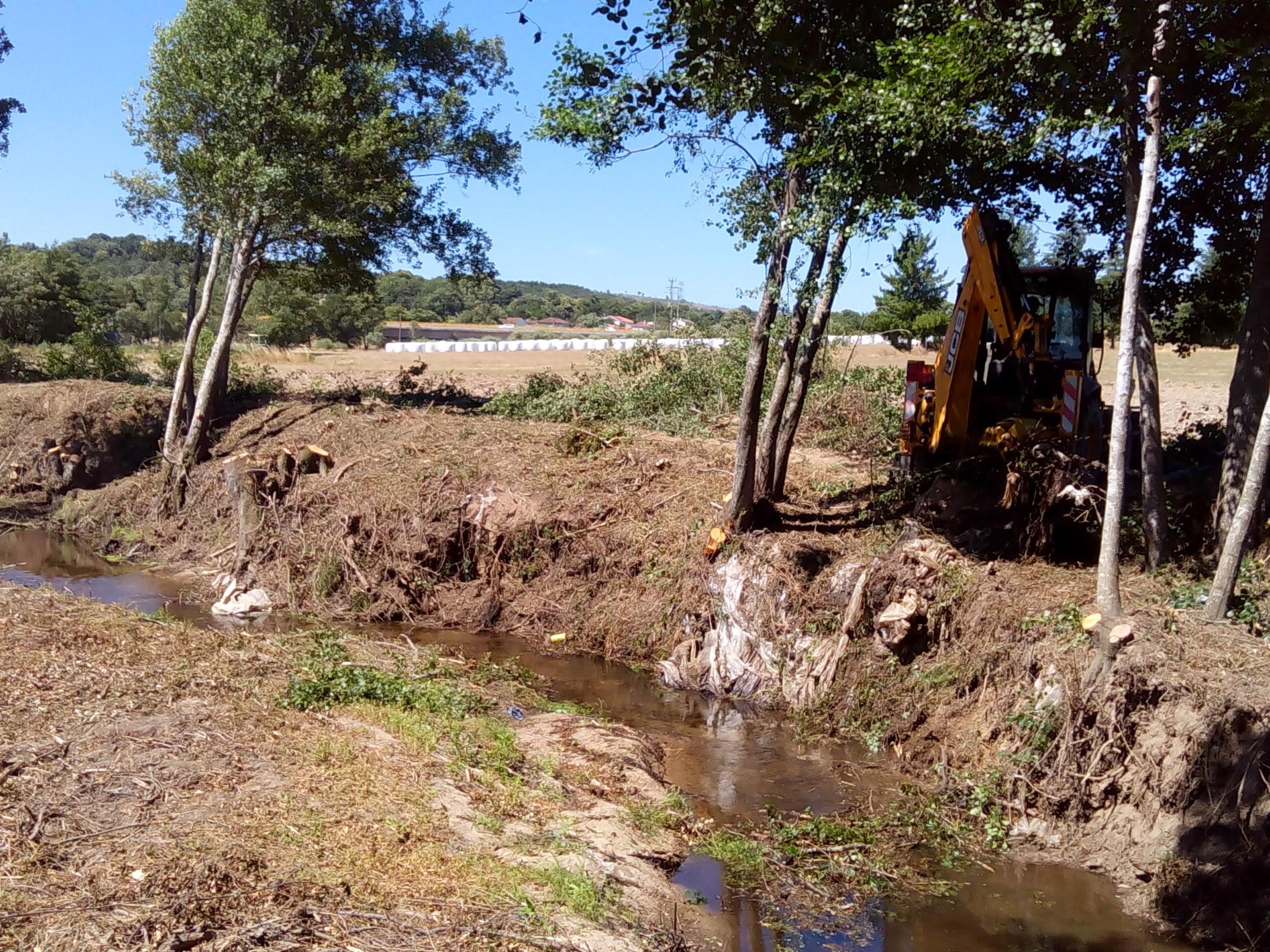 Limpeza dos rios Diz e Noéme