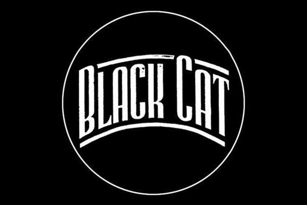 Black cat 600x400