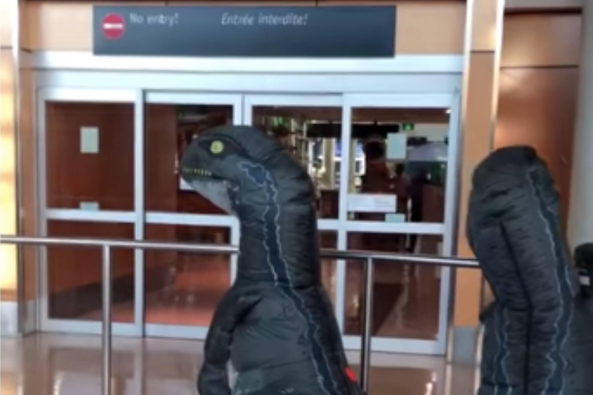 dinosaur family reunion victoria airport