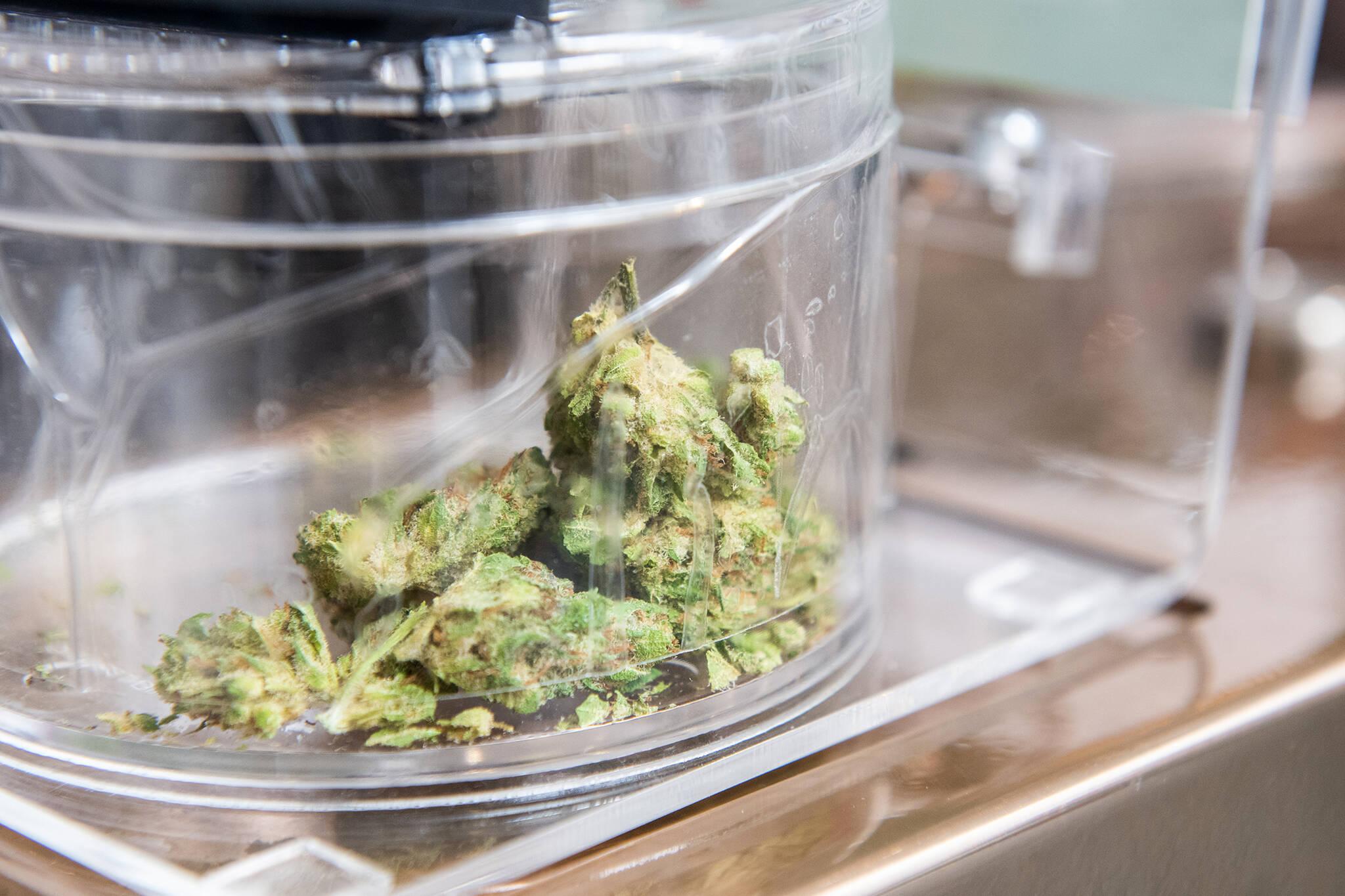 marijuana quebec