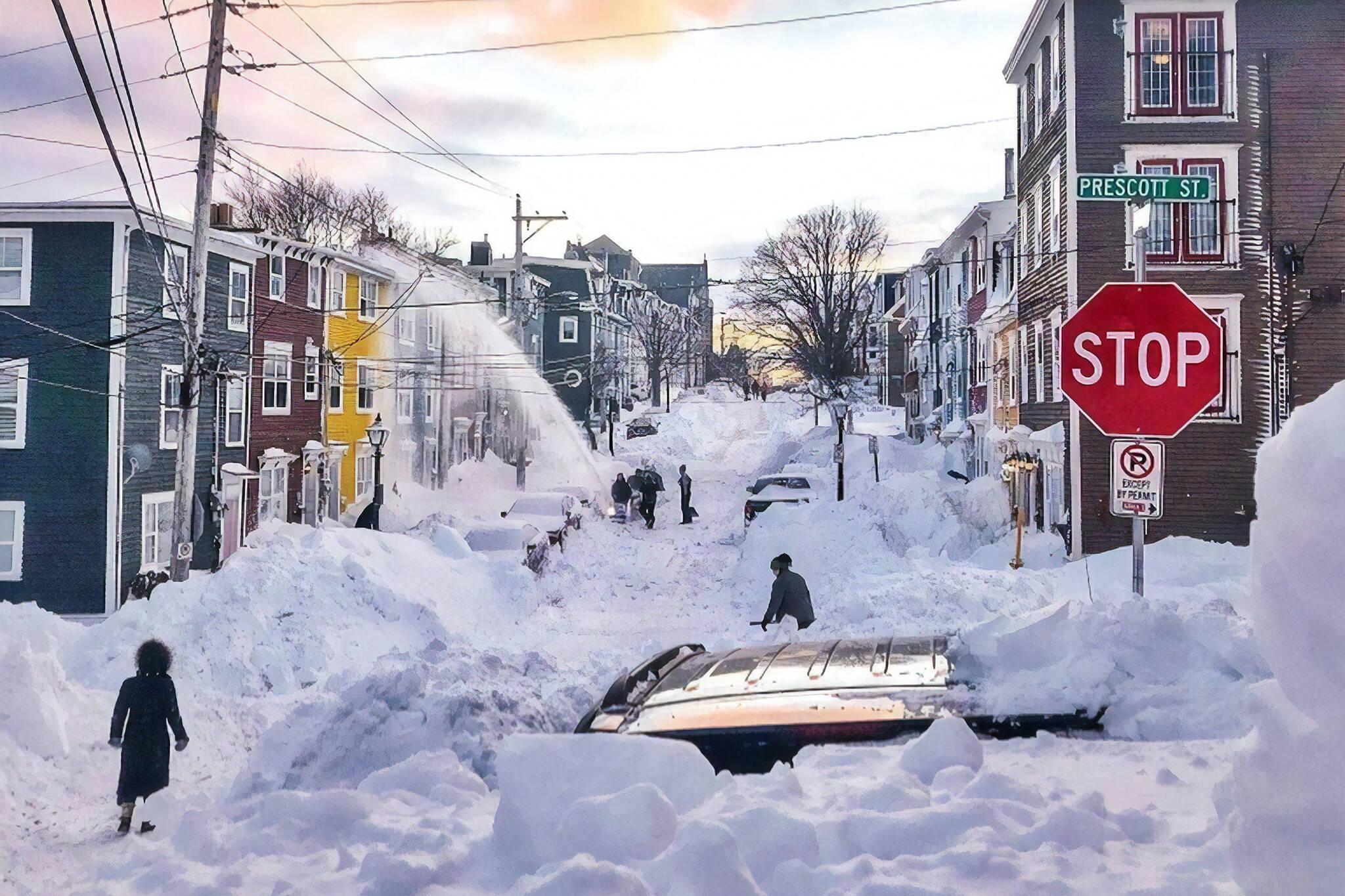 snow in newfoundland