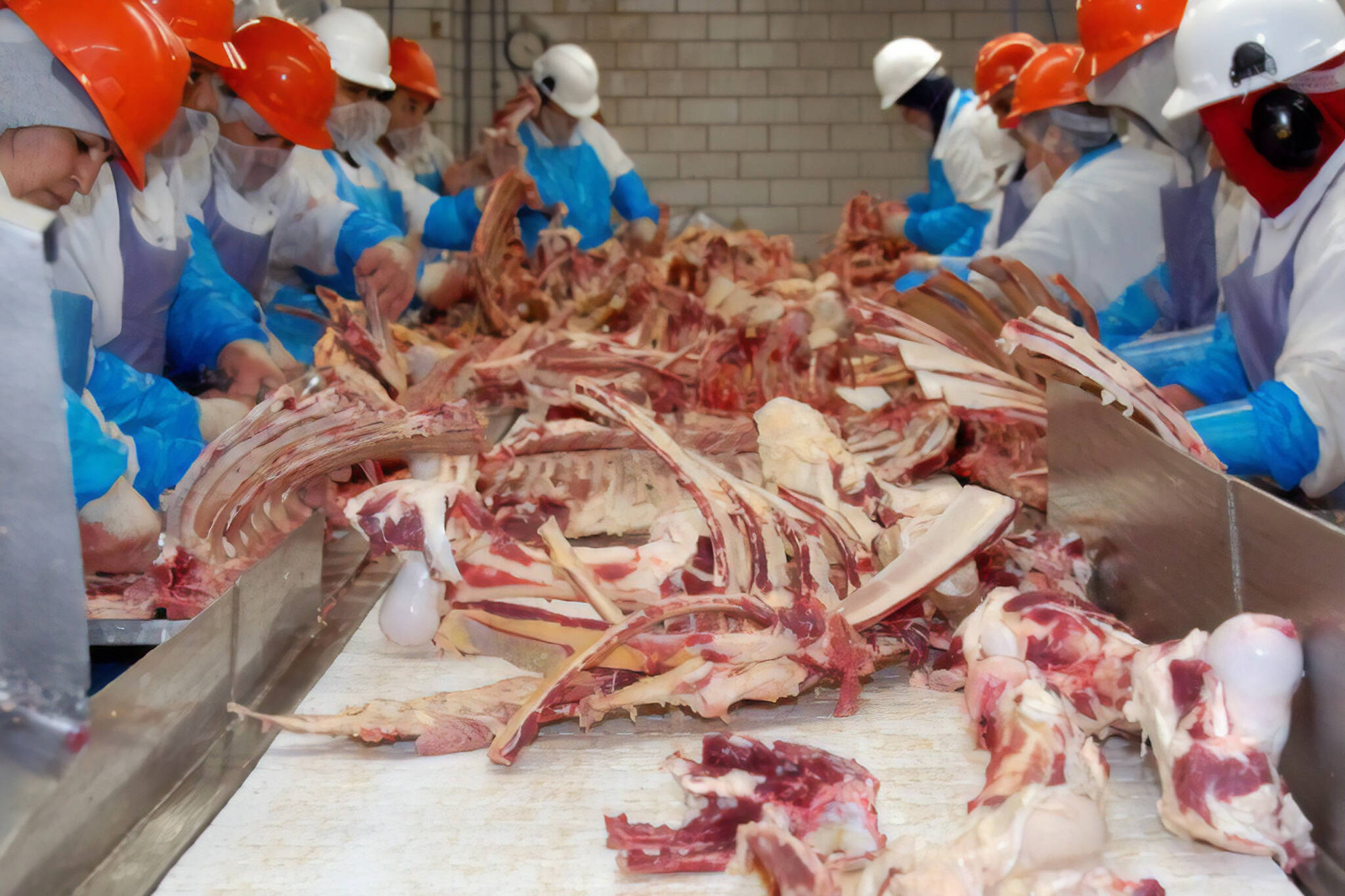 meat packing plants closing canada