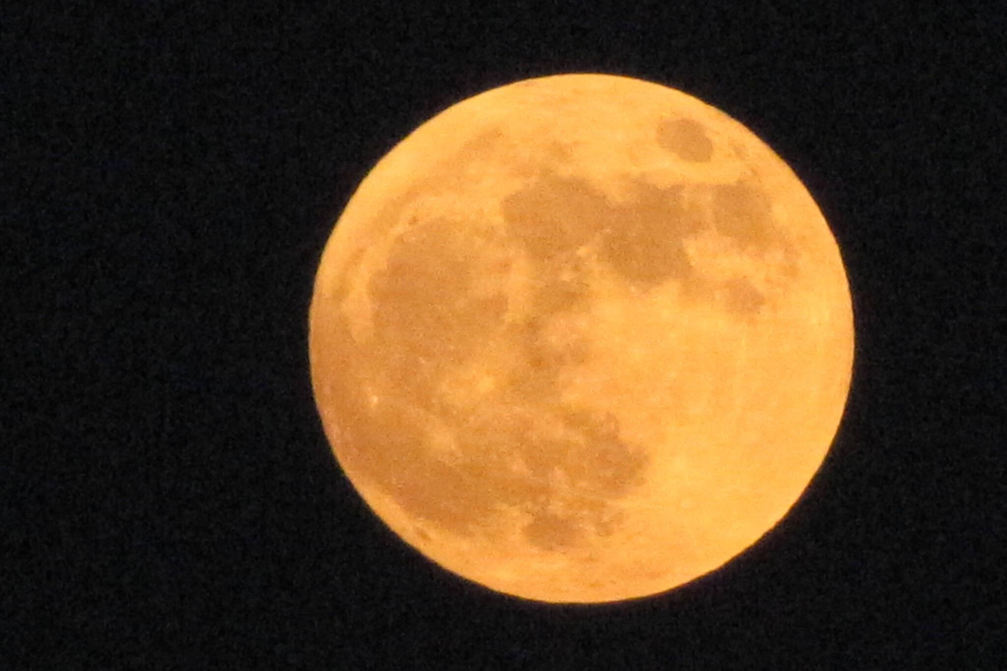 buck moon 2020
