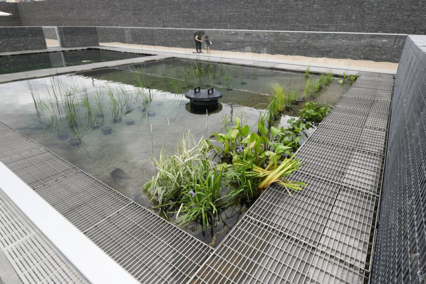 borden park swimming pool