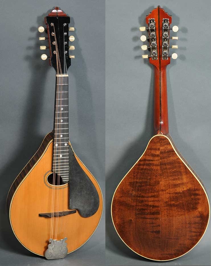 Catch of the Day: Circa 1920 Lyon & Healy Style C | Fretboard Journal
