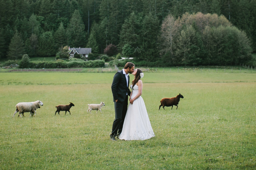 Love at a Seaside Sheep Farm Cottage – Photo by Let's Frolic Together