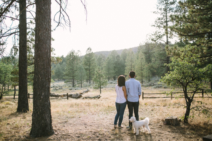 A Mountain Stroll Through the Woods – Photo by Let's Frolic Together