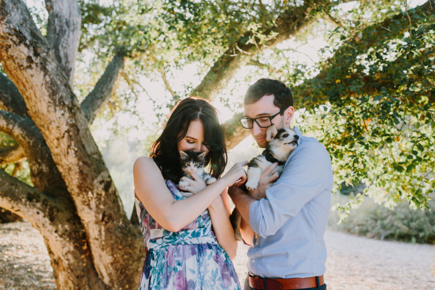 It's Raining Cats and Dogs! – Photo by Let's Frolic Together