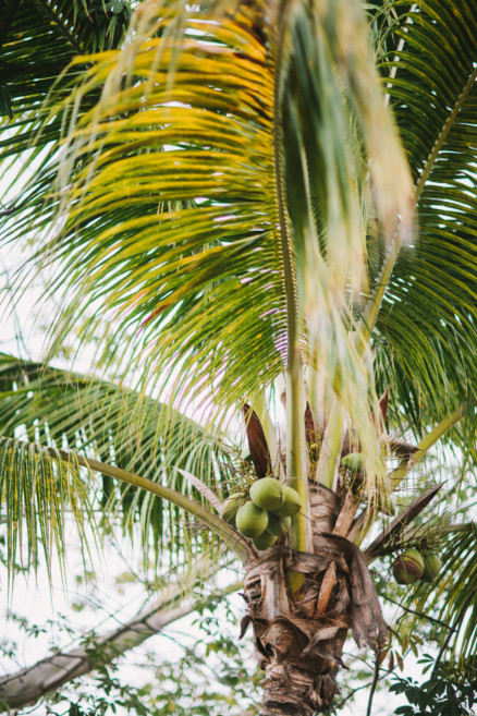 Mischievous Engagement in Mexico – Photo by Let's Frolic Together