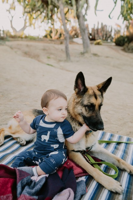 Desert Garden Family Portraits – Photo by Let's Frolic Together