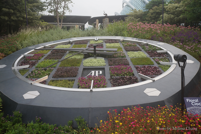 Take time to smell the flowers: A giant living clock at the Gardens by the Bay.