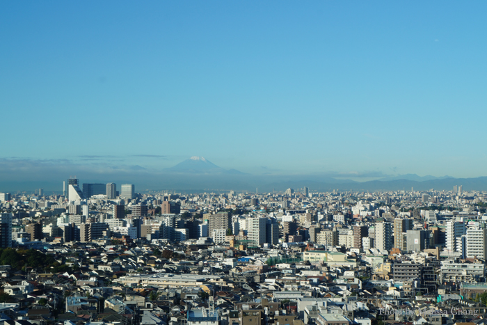 You know it's a nice day in Tokyo when you can see Mt. Fuji.
