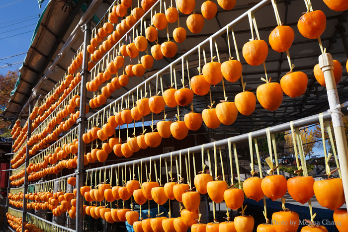 Persimmons drying in Katsunuma. Everyone seems to have their own persimmon tree here.
