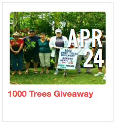 1000 Trees Giveaway