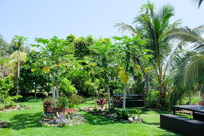 GardenofEatin