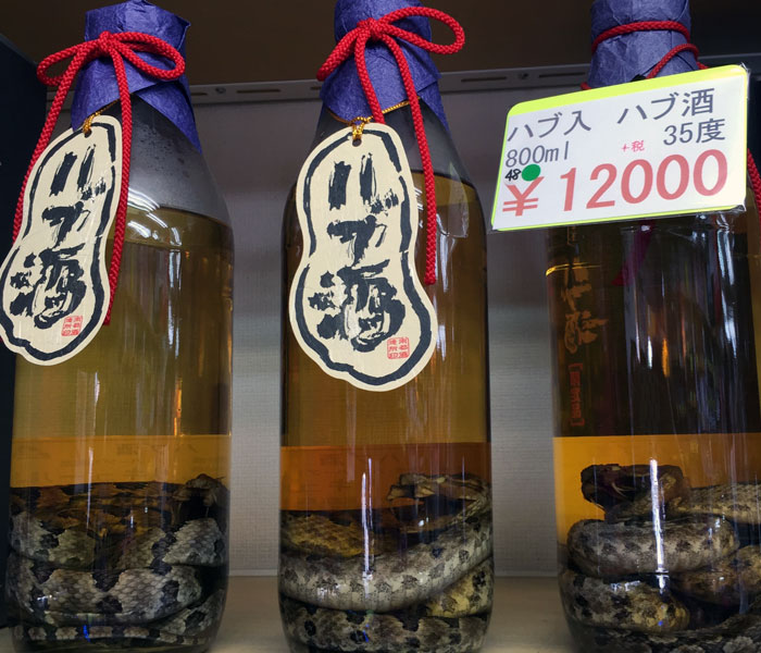 Habushu or Okinawan snake wine is available at many shops in Naha.