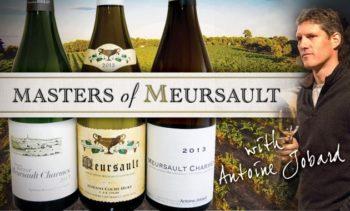 wine1_meursault-web