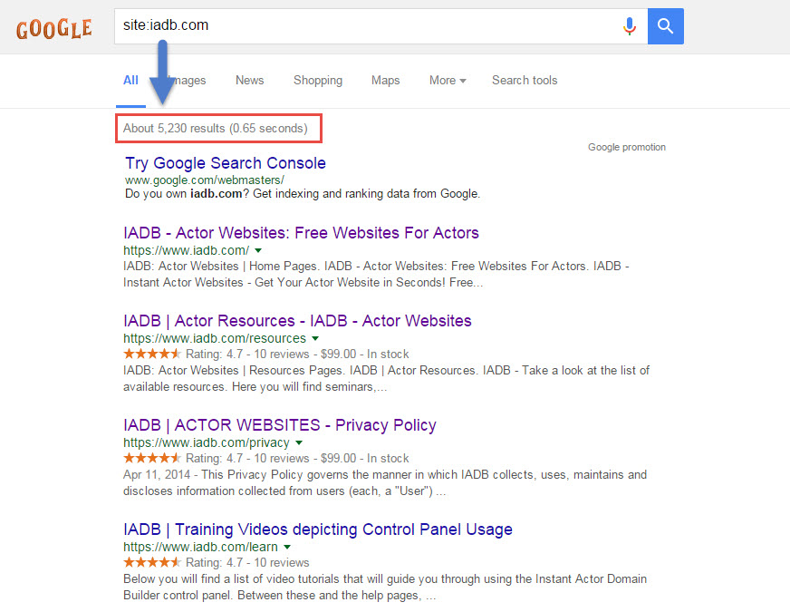 actor website in google search
