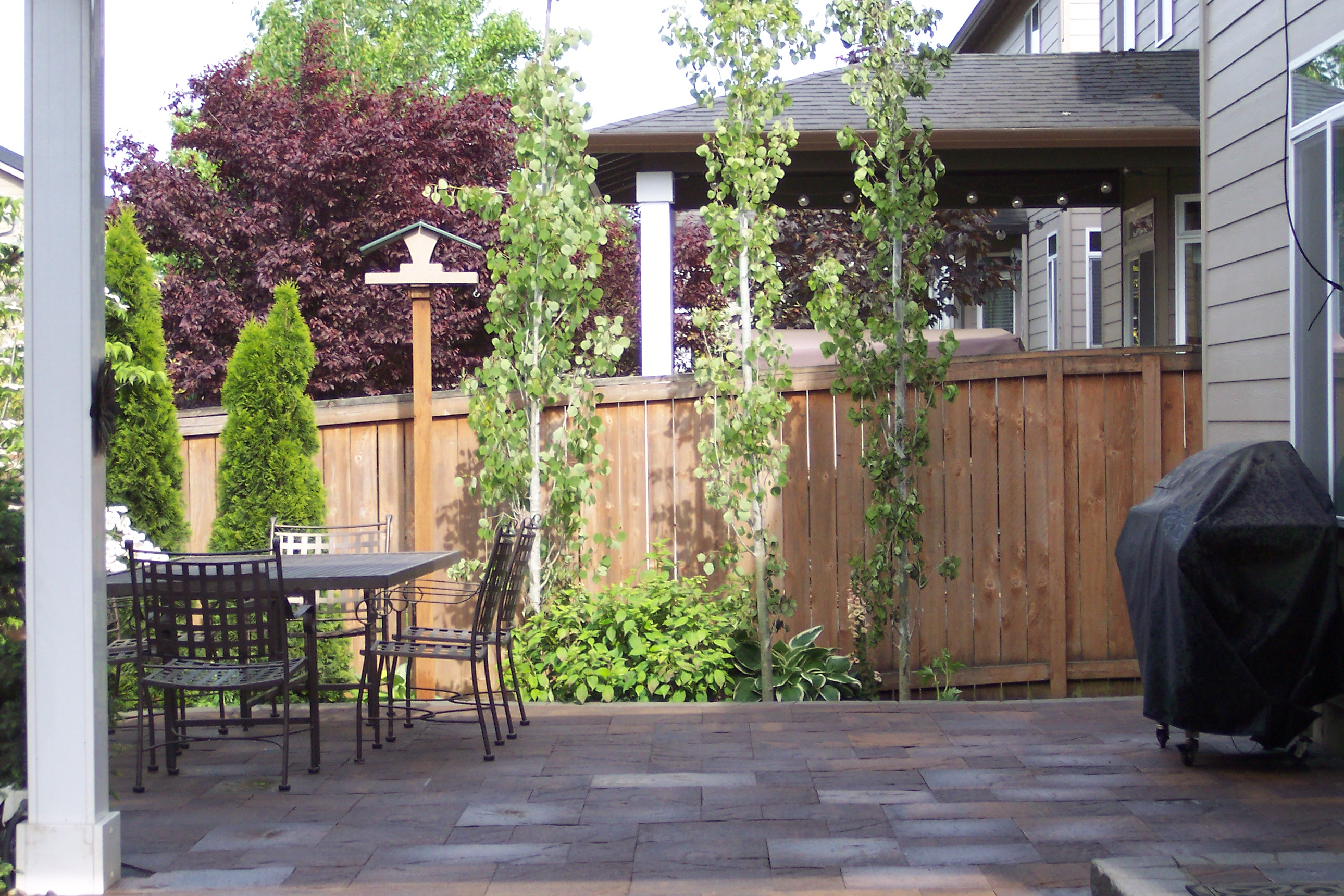 Back patio and fence