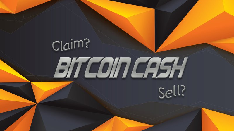 A Beginners Guide To Claiming Your Bitcoin Cash And Selling It