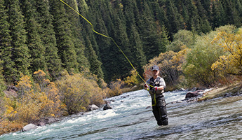 fly fishing in Aspen and the Roaring Fork Valley