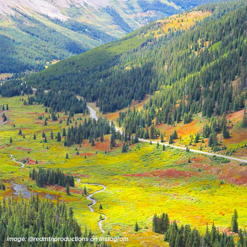 Independence Pass fall colors