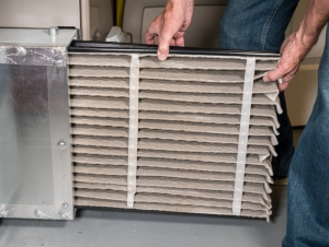 Replace HVAC disposable filters every 3 to six months