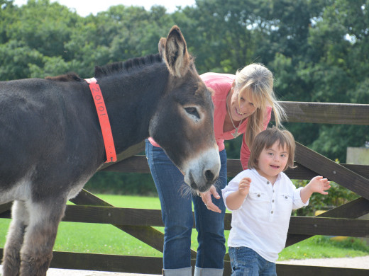 SNAPS' Donkey Sanctuary Session Event tickets - SNAPS