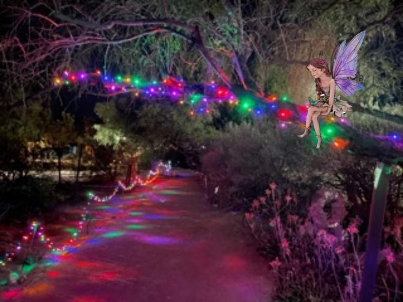 Midsummer Fairy Lights