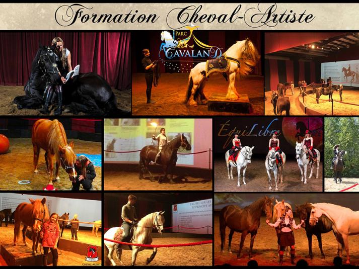 Formation chevaux-artistes 3 jours tickets - Parc Cavaland