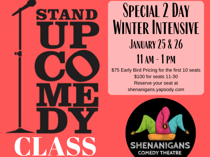 Stand Up Comedy Class: Winter Intensive