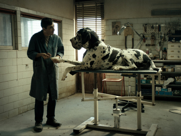 Dogman - feStivale 2019 Event tickets - San Diego Italian Film Festival