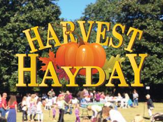 Harvest Hayday 2019 Event tickets - Elizabethan Gardens