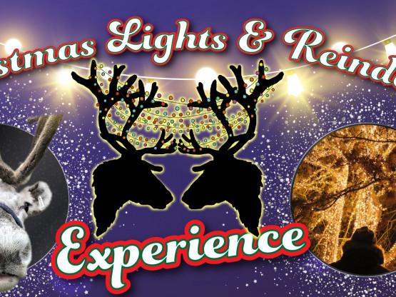 Christmas Lights & Reindeer Experience