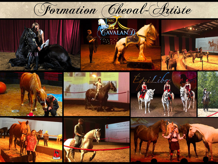 Formation chevaux-artistes  4 jours Event tickets - Parc Cavaland