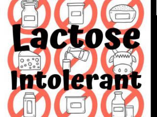 Lactose Intolerant: A DARK COMEDY SHOW!