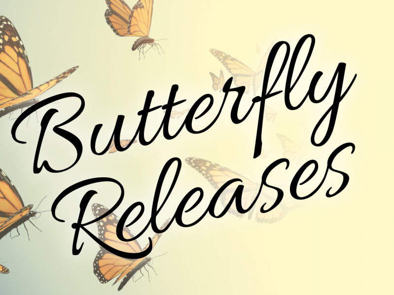 Butterfly House Releases Event tickets - Elizabethan Gardens
