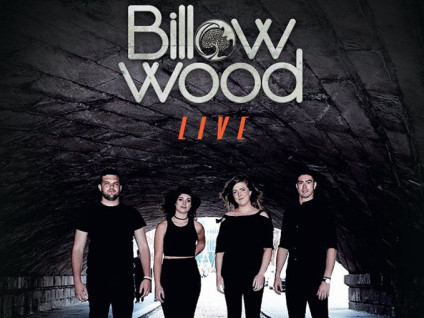 Billow Wood tickets - Dolans pub