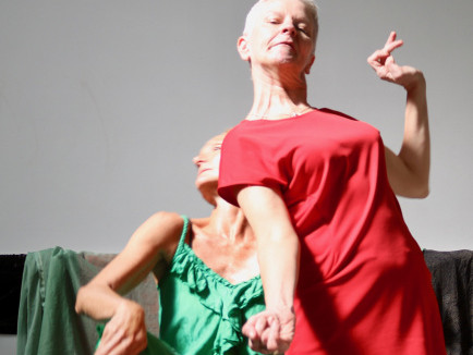 Visible and Invisible / Too  Event tickets - Dance Limerick