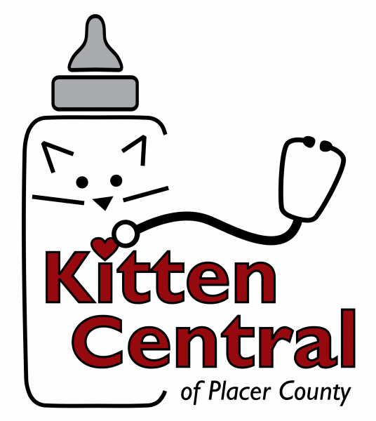 Kitten Central Presents A Labor of Love