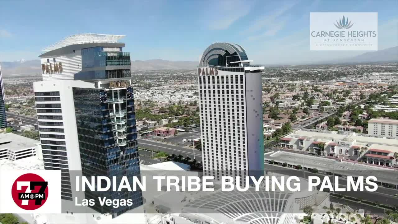 7@7AM Indian Tribe Buying Palms