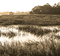 Tybee Island marsh sunset - October 2016