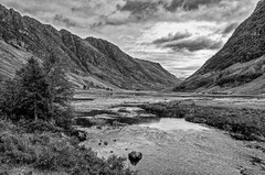 Glencoe B&W conversion