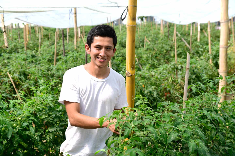 Brochure Agropecuario